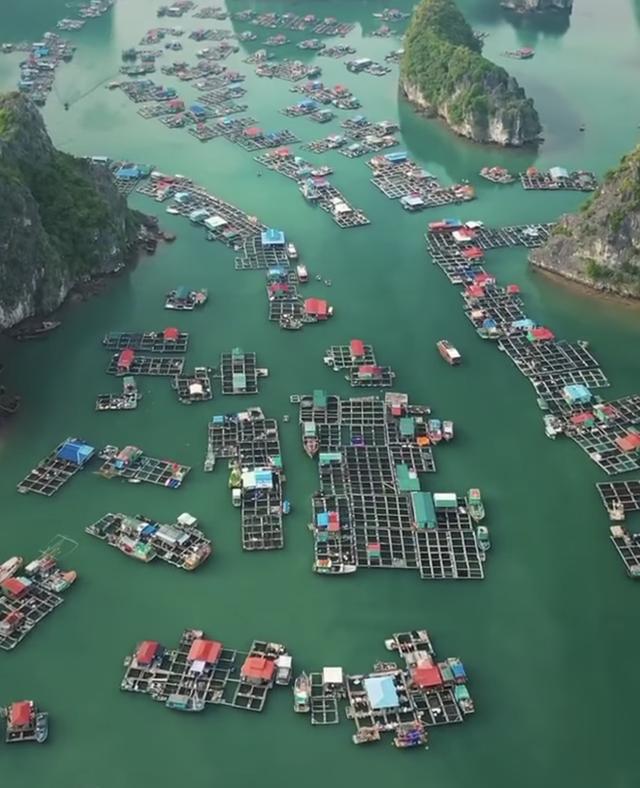 Leonardo DiCaprio chia sẻ hình ảnh vịnh Lan Hạ của Việt Nam trên Instagram, còn kêu gọi mọi người bảo vệ vẻ đẹp của nơi này - Ảnh 5.