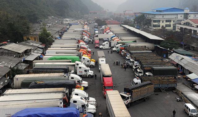 Khó khăn trong xuất khẩu nông sản ở Hà Giang - Ảnh 1.