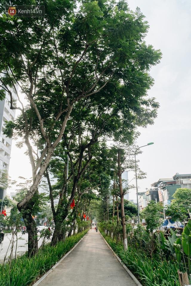 Ảnh, clip: Từ con mương ngập ngụa rác thải đến tuyến đường bộ cực xanh mát giữa lòng Thủ đô - Ảnh 6.