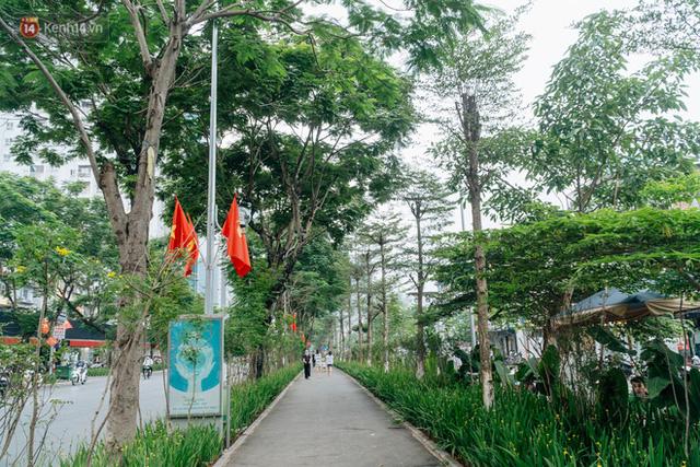 Ảnh, clip: Từ con mương ngập ngụa rác thải đến tuyến đường bộ cực xanh mát giữa lòng Thủ đô - Ảnh 4.