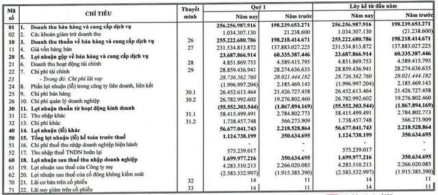 Gỗ Trường Thành (TTF): Quý 1 thoát lỗ nhờ khoản tiền bồi thường từ cổ đông - Ảnh 1.