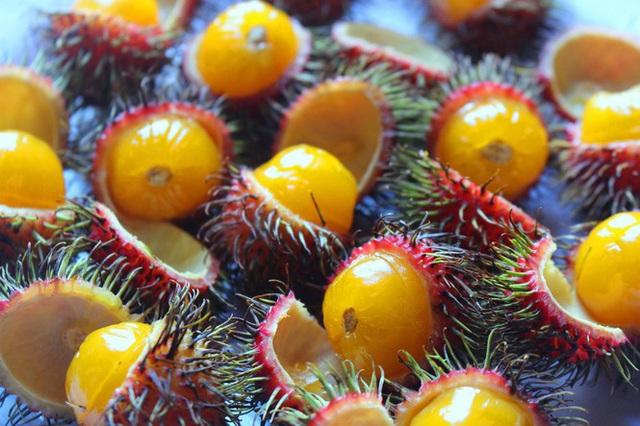 Độc lạ các loại trái cây rừng tràn xuống phố - Ảnh 3.