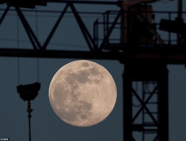 Loạt ảnh ấn tượng về siêu trăng cuối cùng của năm 2020 diễn ra vào đêm qua trên toàn thế giới - Ảnh 5.