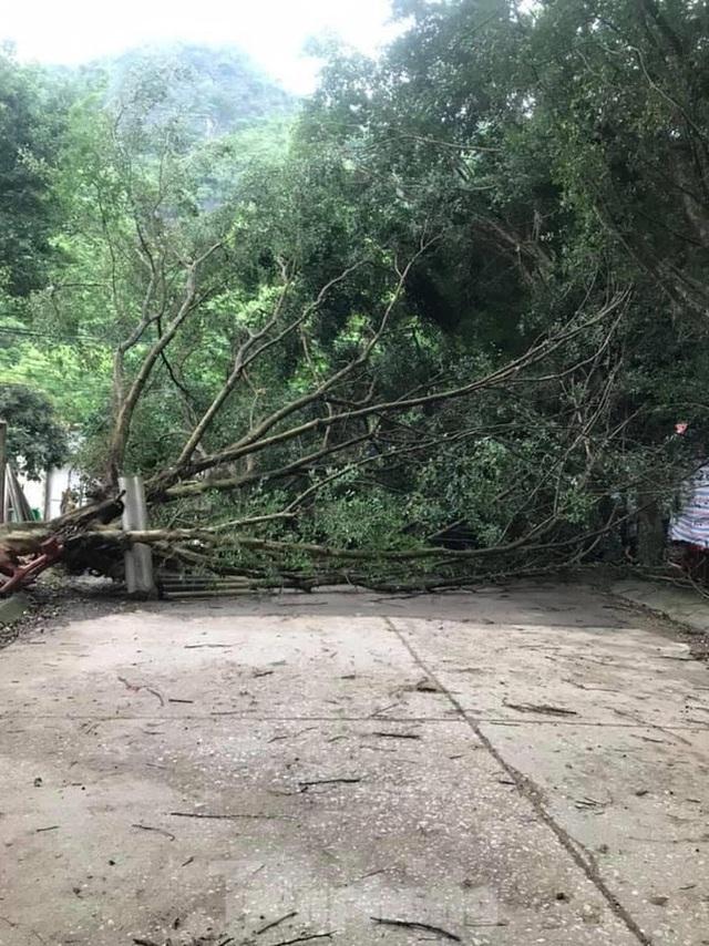 Lạng Sơn bị thiệt hại nặng do giông lốc kinh hoàng giữa đêm - Ảnh 6.