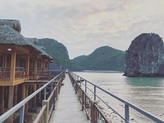 Ai đã tới vịnh Lan Hạ rồi mới hiểu tại sao đến Leonardo DiCaprio cũng phải tấm tắc khen ngợi trên Instagr: Vẻ đẹp hoang sơ của thiên đường bị bỏ quên giữa Hải Phòng - Ảnh 5.