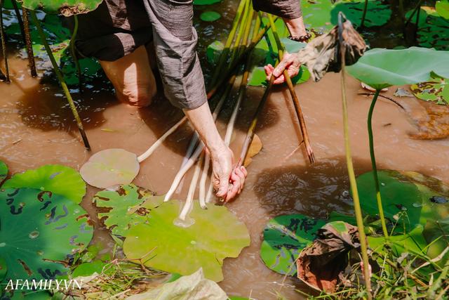 Người phụ nữ chân quê ngoại thành Hà Nội với biệt tài bắt sen nhả tơ, làm nên chiếc khăn giá chẳng kém gì hàng hiệu nổi tiếng - Ảnh 4.