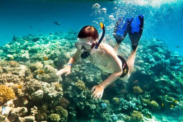 6 vùng biển lặn ngắm san hô đẹp nhất Việt Nam: Rực rỡ đến mê đắm lòng người - Ảnh 16.