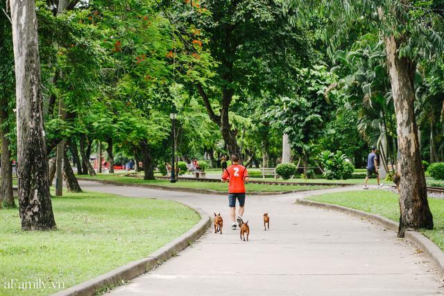Cầm 4.000 đồng đổi lấy 1 ngày tham quan công viên Thống Nhất, nơi mà người Hà Nội đang dần lãng quên và phát hiện bên trong có nhiều thứ xưa nay đâu có ngờ - Ảnh 13.