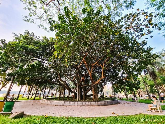 Cầm 4.000 đồng đổi lấy 1 ngày tham quan công viên Thống Nhất, nơi mà người Hà Nội đang dần lãng quên và phát hiện bên trong có nhiều thứ xưa nay đâu có ngờ - Ảnh 22.