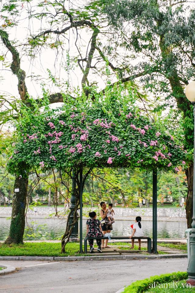 Cầm 4.000 đồng đổi lấy 1 ngày tham quan công viên Thống Nhất, nơi mà người Hà Nội đang dần lãng quên và phát hiện bên trong có nhiều thứ xưa nay đâu có ngờ - Ảnh 49.
