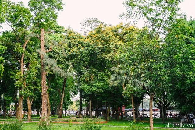 Cầm 4.000 đồng đổi lấy 1 ngày tham quan công viên Thống Nhất, nơi mà người Hà Nội đang dần lãng quên và phát hiện bên trong có nhiều thứ xưa nay đâu có ngờ - Ảnh 7.