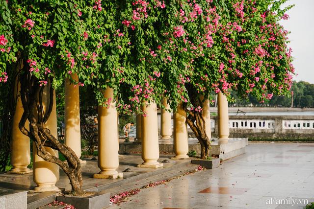 Cầm 4.000 đồng đổi lấy 1 ngày tham quan công viên Thống Nhất, nơi mà người Hà Nội đang dần lãng quên và phát hiện bên trong có nhiều thứ xưa nay đâu có ngờ - Ảnh 66.