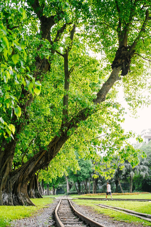 Cầm 4.000 đồng đổi lấy 1 ngày tham quan công viên Thống Nhất, nơi mà người Hà Nội đang dần lãng quên và phát hiện bên trong có nhiều thứ xưa nay đâu có ngờ - Ảnh 69.