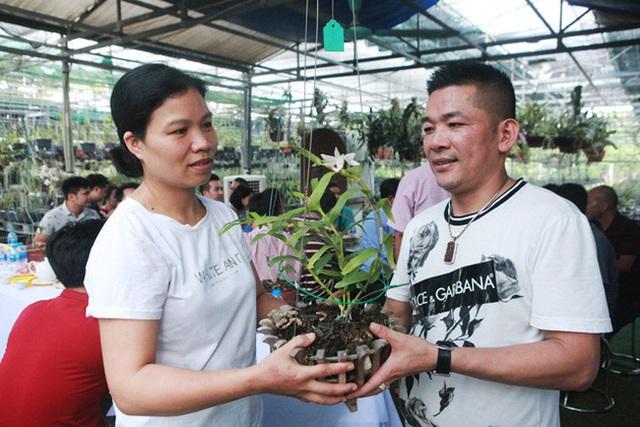 Đại gia Hà Nội chi mạnh 5 tỷ đồng mua giò lan đột biến nhìn như... ngọn rau muống - Ảnh 2.