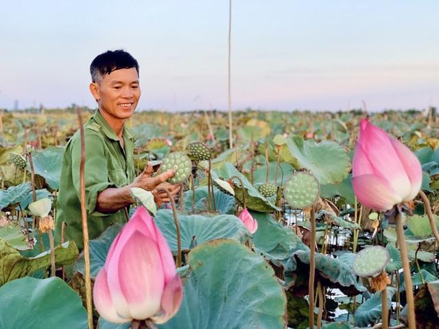 Biến đồng hoang thành đầm sen, nông dân thu hàng chục triệu mỗi vụ - Ảnh 16.