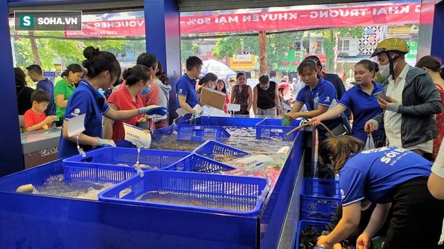 Chen chân mua hải sản giảm sốc 50%, tôm hùm 640.000 đồng/kg, ghẹ xanh 500.000 đồng/kg - Ảnh 1.