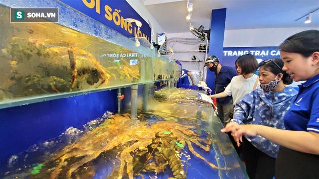 Chen chân mua hải sản giảm sốc 50%, tôm hùm 640.000 đồng/kg, ghẹ xanh 500.000 đồng/kg - Ảnh 12.
