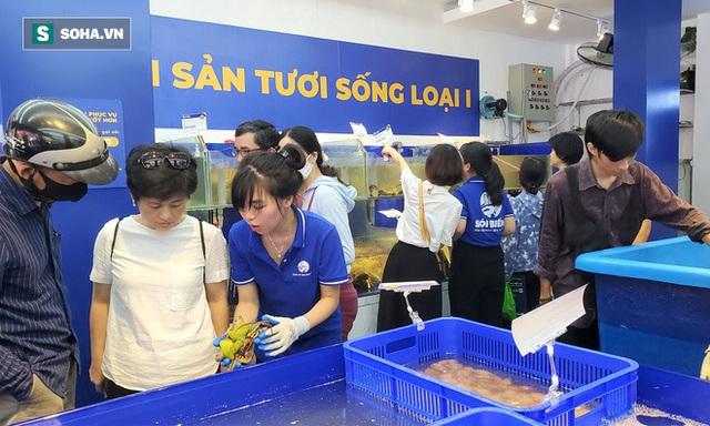 Chen chân mua hải sản giảm sốc 50%, tôm hùm 640.000 đồng/kg, ghẹ xanh 500.000 đồng/kg - Ảnh 7.