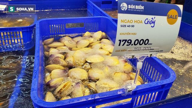 Chen chân mua hải sản giảm sốc 50%, tôm hùm 640.000 đồng/kg, ghẹ xanh 500.000 đồng/kg - Ảnh 10.