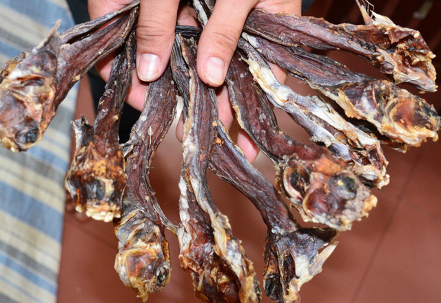 Việt Nam có một loài cá biết leo cây, chạy nhảy và còn là đặc sản nổi tiếng cả một vùng - Ảnh 6.