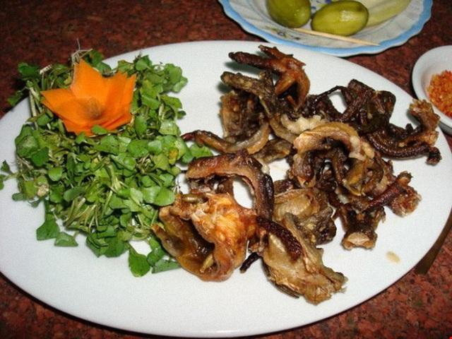 Việt Nam có một loài cá biết leo cây, chạy nhảy và còn là đặc sản nổi tiếng cả một vùng - Ảnh 7.
