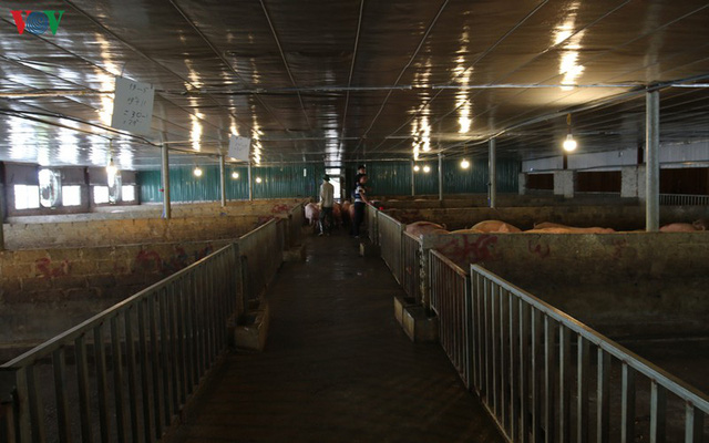 Chợ lợn lớn nhất miền Bắc đìu hiu, ế ẩm - Ảnh 18.