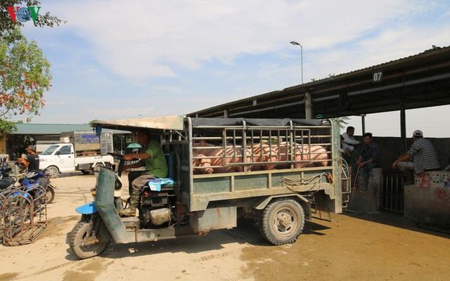 Chợ lợn lớn nhất miền Bắc đìu hiu, ế ẩm - Ảnh 6.