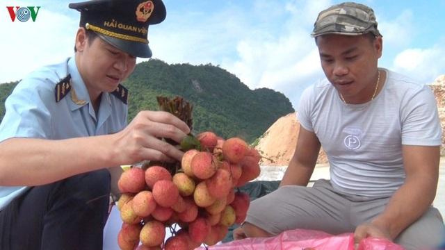 Tín hiệu vui cho xuất khẩu vải quả tươi sang Trung Quốc - Ảnh 1.