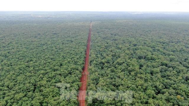Cận cảnh khu đất hơn 1,8 nghìn ha đang thu hồi làm sân bay Long Thành - Ảnh 2.