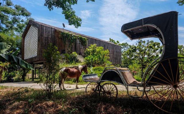 Lạc vào ngôi nhà cổ tích của đôi vợ chồng trẻ tại Đà Nẵng - Ảnh 5.