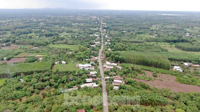 Cận cảnh khu đất hơn 1,8 nghìn ha đang thu hồi làm sân bay Long Thành - Ảnh 9.