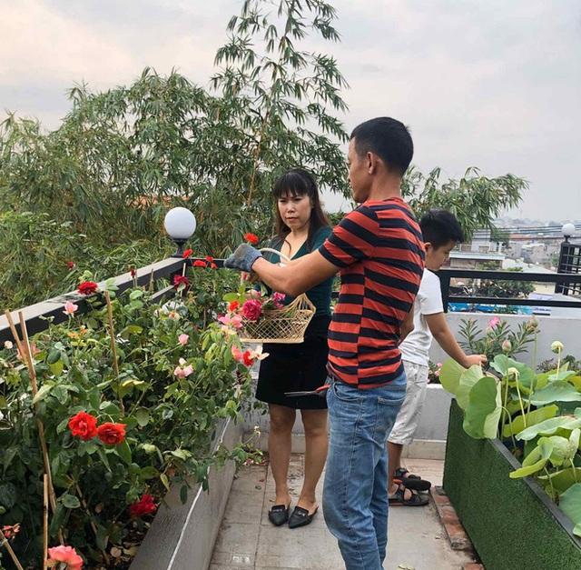 Đầm sen trên sân thượng 300m2 giữa lòng Sài Gòn: Ông chủ tự tay làm từ A-Z, chi phí chỉ 50 triệu  - Ảnh 5.