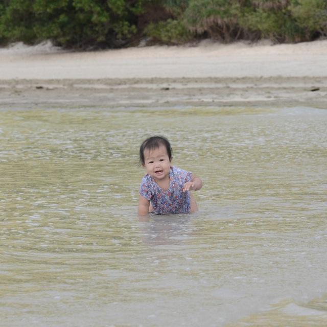 """Ông bố Hà Nội bỏ việc vì nghiện con: Cùng con """"đi đu đưa"""" từ 6 tháng tuổi, 3 tuổi đã """"thả"""" con đi khám phá đảo hoang, cứu hộ rùa - Ảnh 11."""