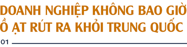 GS. Nguyễn Mại: Tương lai dòng FDI vào Việt Nam và nỗi lo của những doanh nghiệp như Samsung khi Vingroup, Viettel... lớn lên - Ảnh 1.