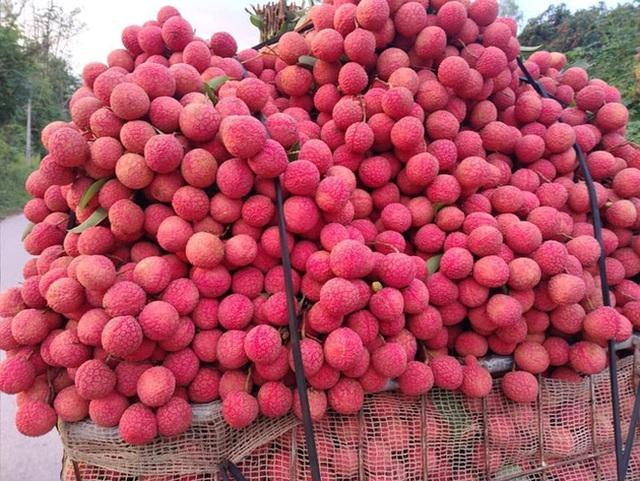 Dân mạng Việt khoe những trái vải bán trong siêu thị Nhật, 120k được mỗi 7 quả mà vẫn cháy hàng - Ảnh 1.