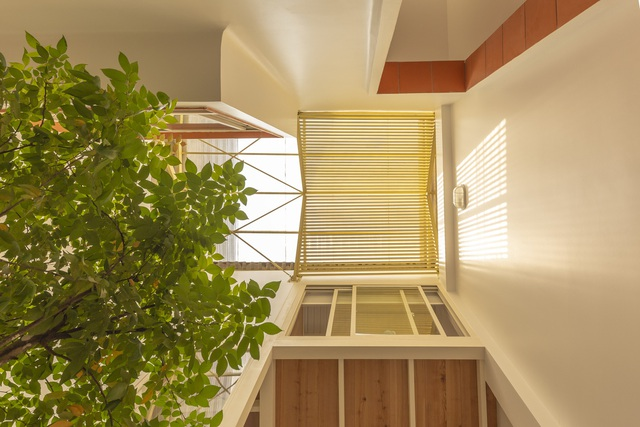Nhà mái đôi có khả năng chống nắng tuyệt vời tại TP HCM - Ảnh 11.