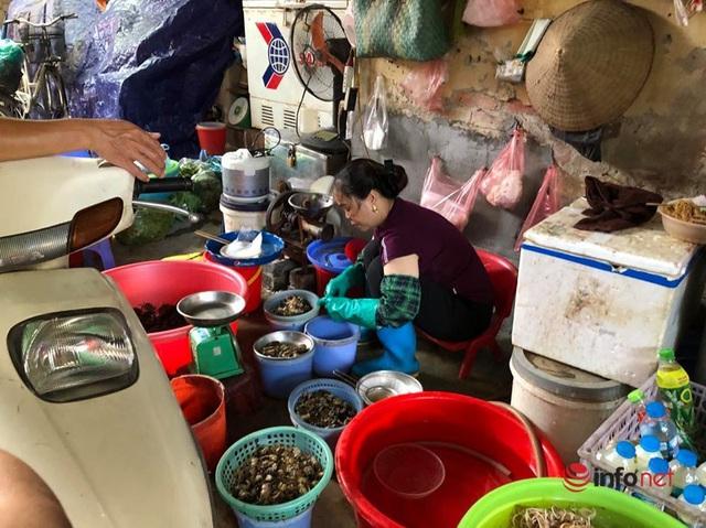 Nắng nóng, nghìn quả dừa bán veo mỗi ngày, thịt lợn không bóng khách - Ảnh 4.