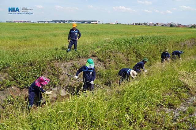 Ảnh: Nhân viên sân bay Nội Bài đẫm mồ hôi làm việc giữa nắng thiêu đốt - Ảnh 11.