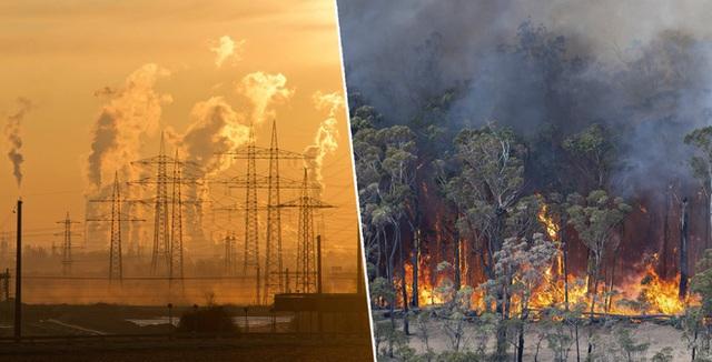 Nhân loại vừa trải qua tháng 5 nóng nhất lịch sử, 2020 có nguy cơ lọt Top 10 năm nóng nhất mọi thời đại - Ảnh 2.