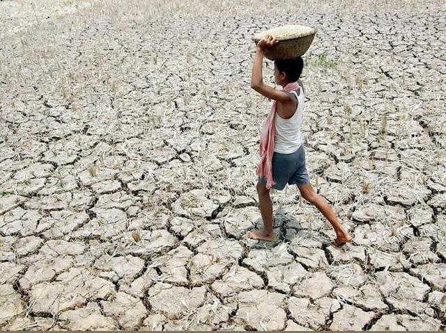 Nhân loại vừa trải qua tháng 5 nóng nhất lịch sử, 2020 có nguy cơ lọt Top 10 năm nóng nhất mọi thời đại - Ảnh 3.