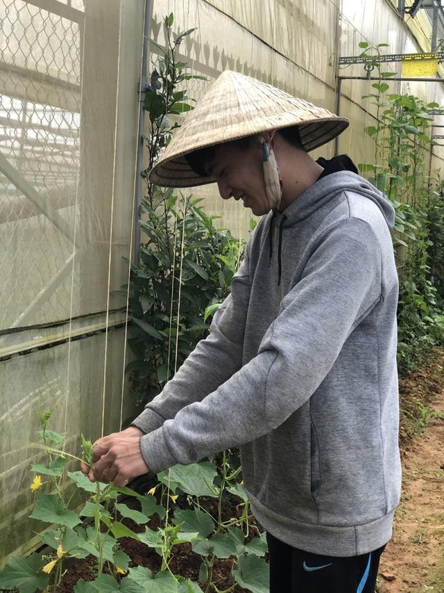 Cử nhân Luật bỏ thành phố lên Đà Lạt trồng rau, bị cha mẹ phản đối nhưng 1 năm sau nhận lại thành quả bất ngờ - Ảnh 10.