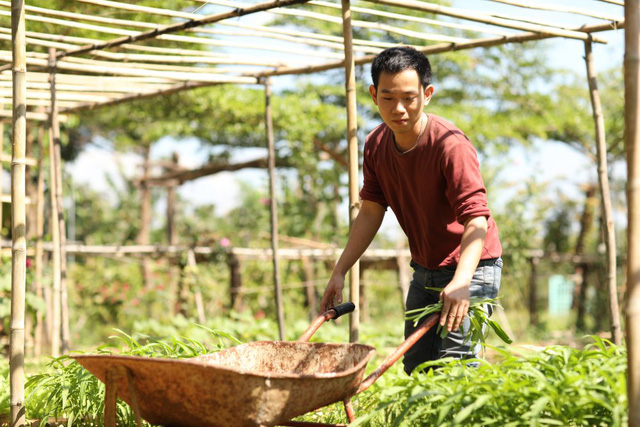 Bỏ Đại học Bách Khoa từ năm thứ 3, cựu giám đốc Cầu Đất Farm lập sàn TMĐT bán nông sản trên Tiki, Lazada và tương lai là Amazon - Ảnh 1.
