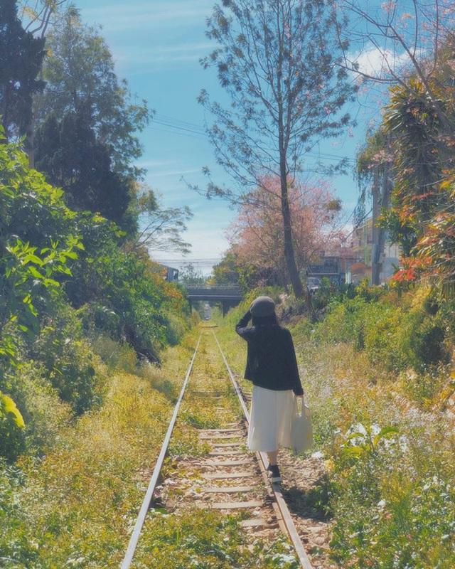 """3 con đường tàu với khung cảnh đẹp nhất Việt Nam, xem ảnh mà dân mạng không tin vào mắt mình vì """"ảo"""" y hệt trong phim - Ảnh 23."""