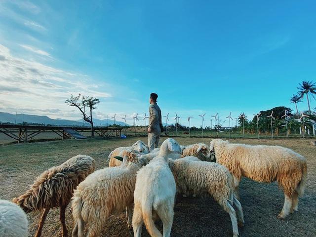 """Chinh phục đảo Bình Hưng hè này chỉ với 2,8 triệu VNĐ: Vẻ đẹp hoang sơ đầy thơ mộng của 1 trong """"Tứ Bình"""" thiên đường biển của Việt Nam - Ảnh 9."""