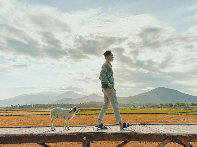"""Chinh phục đảo Bình Hưng hè này chỉ với 2,8 triệu VNĐ: Vẻ đẹp hoang sơ đầy thơ mộng của 1 trong """"Tứ Bình"""" thiên đường biển của Việt Nam - Ảnh 2."""