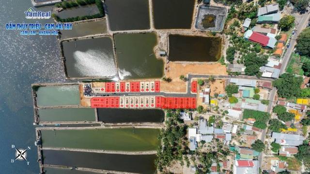 Tái diễn phân lô, bán nền tràn lan ở Khánh Hòa - Ảnh 1.