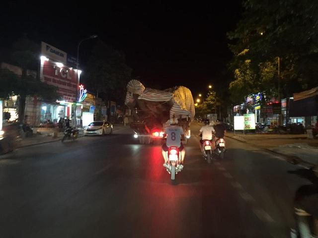 Xôn xao hình ảnh xe chở cây quái thú băng băng chạy trên đường ở Nghệ An - Ảnh 6.