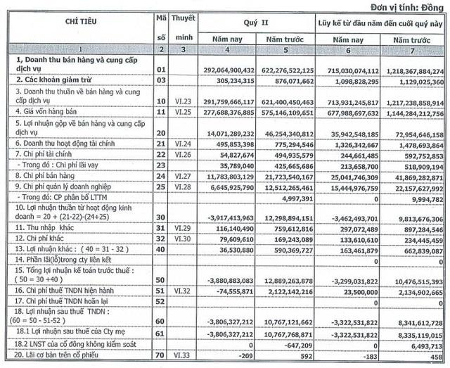 Timexco (TMC): Nguồn thu xăng dầu sụt giảm mạnh, quý 2 lỗ 3,8 tỷ đồng - Ảnh 2.