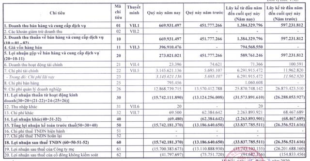 Hakinvest (HKB): Quý 2/2020 lỗ thêm 13 tỷ đồng - Ảnh 1.