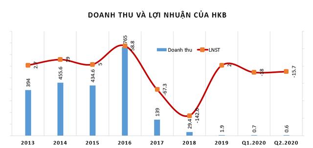 Hakinvest (HKB): Quý 2/2020 lỗ thêm 13 tỷ đồng - Ảnh 2.